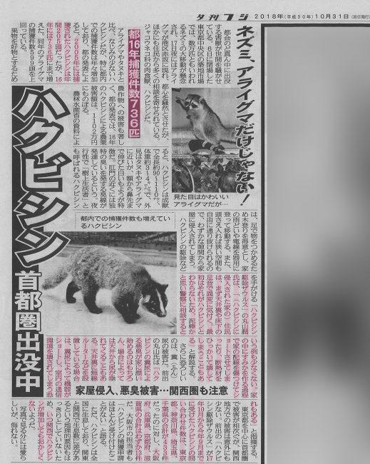 夕刊フジ2018年10月31日記事