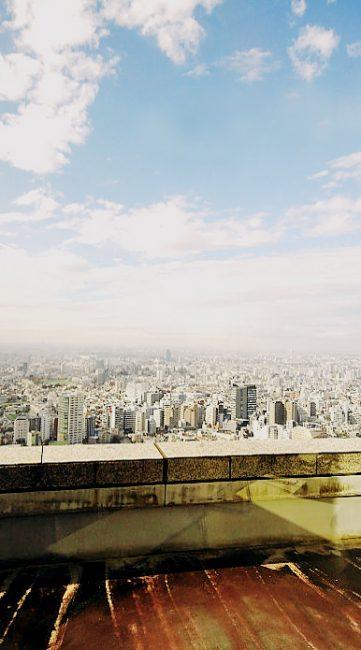都庁環境局・19階からの眺め